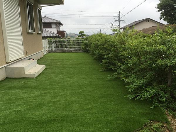 自然の樹木と人工芝が