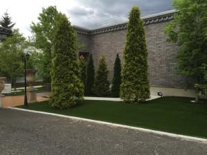 人工芝と天然芝の違い
