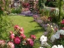 庭の人工芝